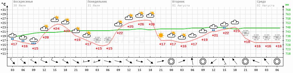Метеограмма Моршанск