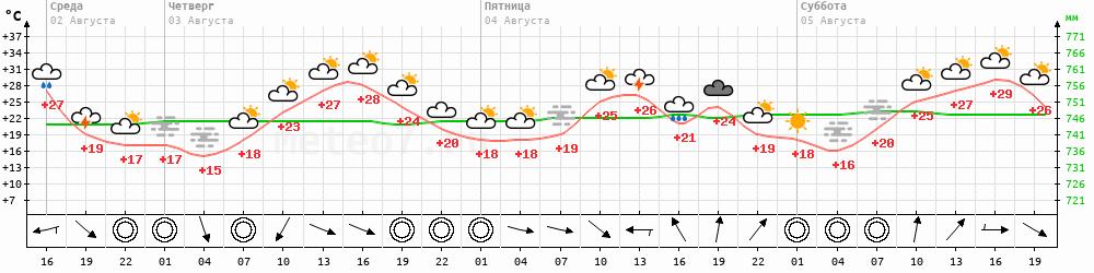 Метеограмма Ижевск