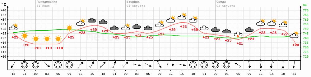 Метеограмма Поярково