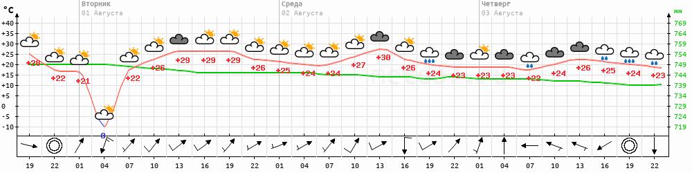Метеограмма Дальнереченск